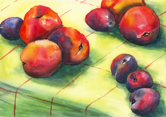 Still life watercolour painting