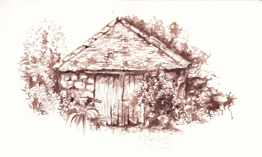 Observational sketch using ink