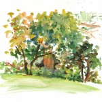 Observational watercolour painting