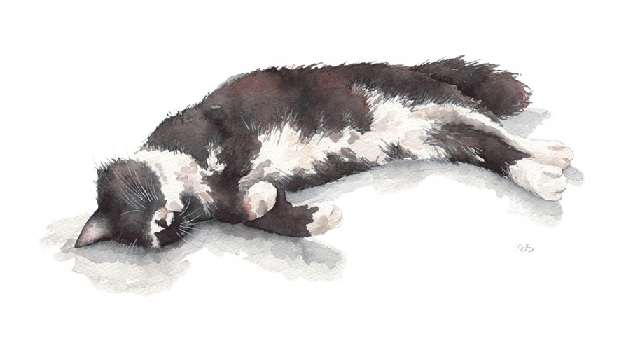 Commissioned Pet Portrait of Thomas