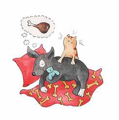 Artwork from Geronimo the Dog who Thinks He's a Cat published by Wacky Bee Books