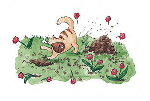 Artwork from Philomena the Cat who Think She's a Dog published by Wacky Bee Books